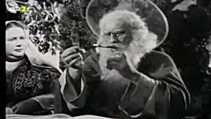 Сиромашка радост (1958)