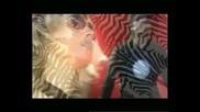 Сръбска кавър- Иван Танев-изневяра- Spasi Me - Trik Fx - Диана - Ти Си Моят Живот