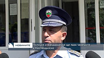 Полиция и жандармерия ще пази черешите в Кюстендилско
