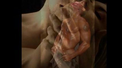 A Love So Beautiful - Michael Bolton ... / превод /