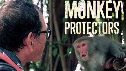Изкуството на съжителството: маймуни и хора