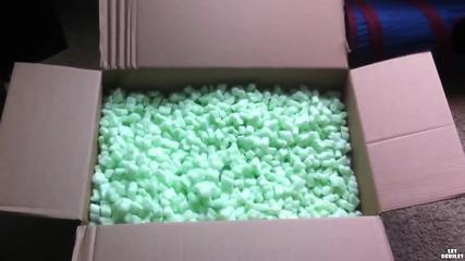 Невестулки се забавляват в кутия