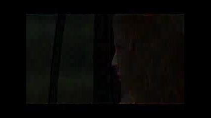 Solstice Trailer