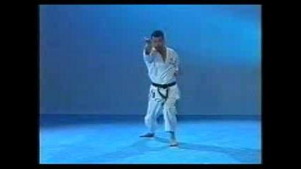 Карате Шотокан Ката Gojushihosho