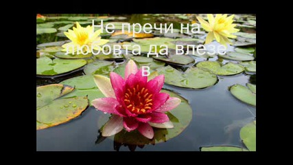 Да постигнеш мир...