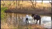 Този кон направо я окъпа.