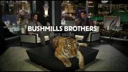 Реклама на Bushmills