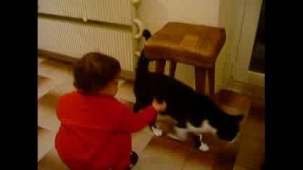 Хлапе И Коте - Конкуренция За Салам