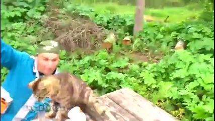 Котка устройва засада по време на риболов!
