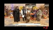 =3 by Ray William Johnson Episode 49: Drunk Ewoks