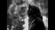 Samira - The Rain (dance Swing Mix)