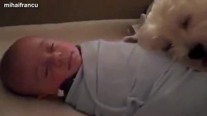 Сладко спане, бебета с животни :)