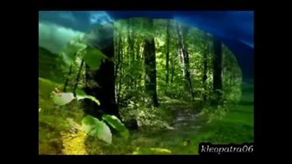 Цветен сън-ванеса Мей