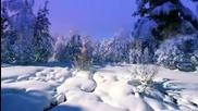 Andre Rieu - White Christmas