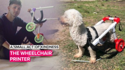 A Small Act of Kindness: This man made doggie wheelchairs his mission