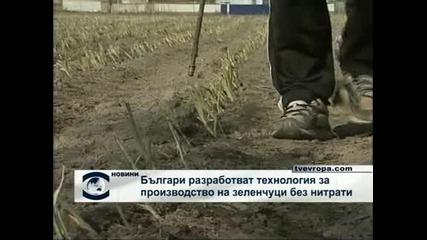 Българи разработват технология за отглеждане назеленчуци без нитрати
