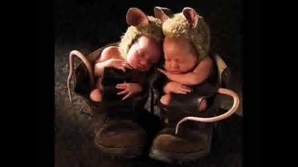 Снимки На Бебета