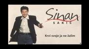 Sinan Sakic i Juzni vetar - Krvi svoje ja ne zalim (hq) (bg sub)