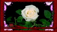 Алла Пугачова -милион Рози