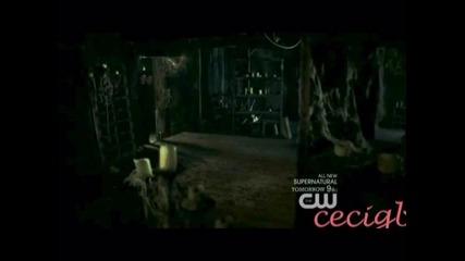 •• Секси съм и го знам •• Damon and Stefan ••