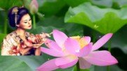 Даровете на природата - красивият лотус!