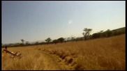 Защо не е хубаво да се кара колело в Африка ли?! Гледайте и сами ще си отговорите на този въпрос!