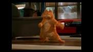 Garfield Dance - Hey Mama