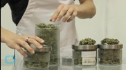 Race is on to Develop 'Pot Breathalyzer'