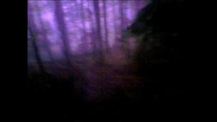 Downhill Запис От Кормилото