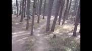Downhill - Freeride - Road Gap и скока над него