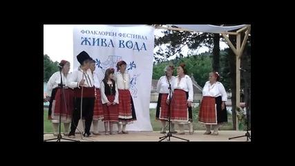 Широковска китка от с. Широково - участие на фестивала Жива вода, с. Каран Върбовка - 15 юни 2013 г.