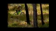 Downhill With Cedric Gracia