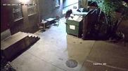 Мечка краде кофа за боклук!