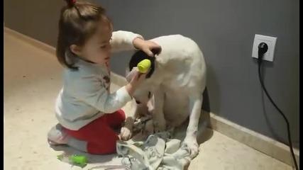 Дете преглежда куче