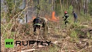 Ukraine: Forest fire threatening Chernobyl nuclear plant brought under control