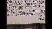 Bijela 053