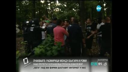 В печата: Румънци във фолио плячкосват по моловете
