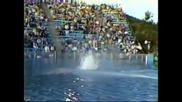Уникално!скок от 172 фута във басейн