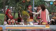Гигантска торта и награди на Празника на черешата в Кюстендил