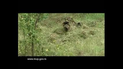 Serbian Special Forces (saj, ptj, zandarmerija)
