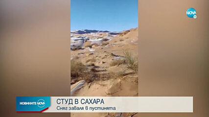 РЯДКО СРЕЩАНО ЯВЛЕНИЕ: Сняг и лед в пустинята Сахара (ВИДЕО+СНИМКИ)