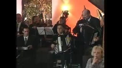 Saban Saulic - S namjerom dodjoh u veliki grad - (Live)