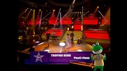Tropiko bend - Pusti ritam PINK MUSIC FESTIVAL NAJAVA