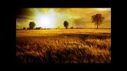 Sane - Lost Highway + Tekst