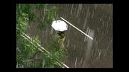 Urban Rain / Ърбан Дъждът/