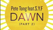 Pete Tong ft. S. Y. F. - Dawn ( Jaymo And Andy George Remix ) [high quality]