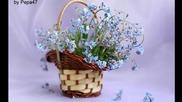 Синьо цвете ... Незабравка! ... (по стихове на iren5) ... ...
