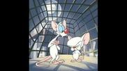 Cartoon Network - Pinky And The Brain(theme)