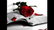 Българското си е Българско !!! .. P R O G R E S S I V E ... Bulgarian Rose !!