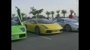 Бегачки От Дубай